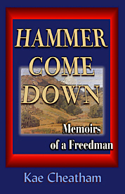 Hammer Come Down cover
